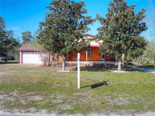 40631 E 5TH Avenue, Umatilla, FL 32784 (MLS #V4905517) :: Delgado Home Team at Keller Williams