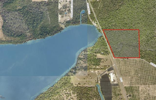 State Rd 11, De Leon Springs, FL 32130 (MLS #V4905521) :: Griffin Group