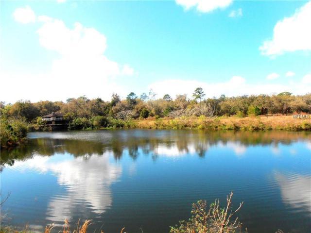2230 Lake Sophie Kay Place, De Leon Springs, FL 32130 (MLS #V4905653) :: Griffin Group