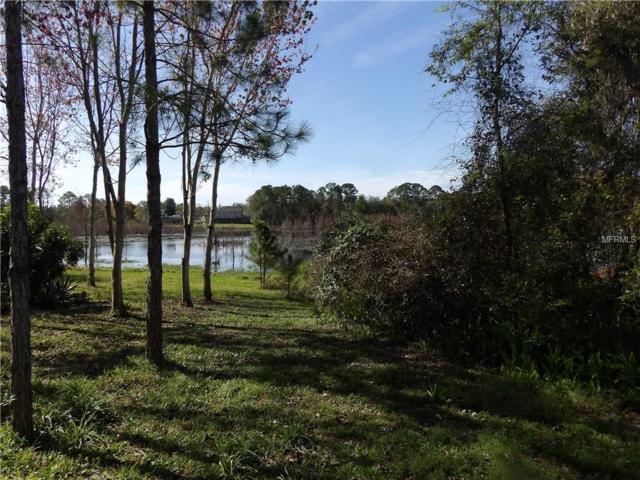 509 Tradewinds Drive, Deltona, FL 32738 (MLS #V4905716) :: Premium Properties Real Estate Services