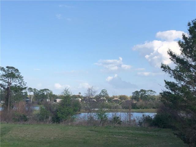 109 James Pond Court, Debary, FL 32713 (MLS #V4905772) :: RealTeam Realty