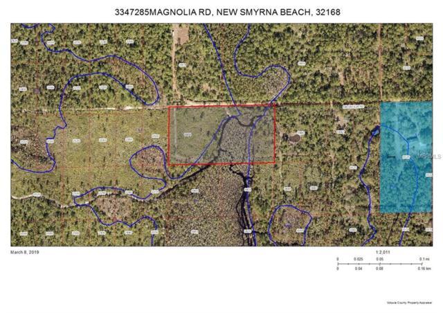 Magnolia Road, New Smyrna Beach, FL 32168 (MLS #V4906097) :: Premium Properties Real Estate Services