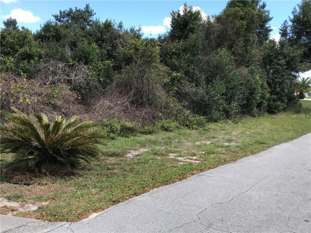 1439 Galena Terrace, Deltona, FL 32725 (MLS #V4906147) :: Premium Properties Real Estate Services