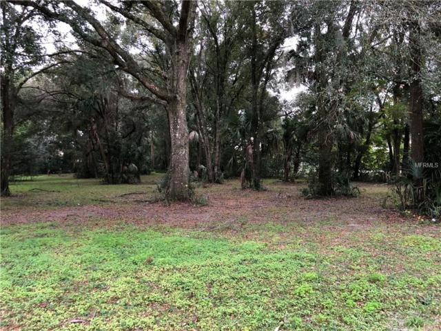 W Minnesota Avenue, Deland, FL 32720 (MLS #V4906214) :: Burwell Real Estate