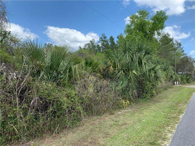 County Road 42, Paisley, FL 32767 (MLS #V4906254) :: The Duncan Duo Team
