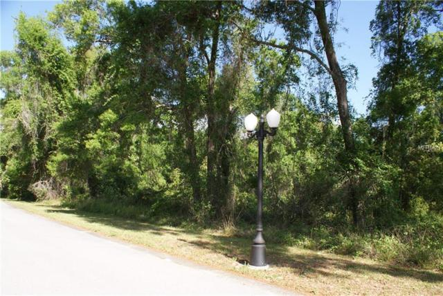 Address Not Published, Deland, FL 32720 (MLS #V4906495) :: Burwell Real Estate