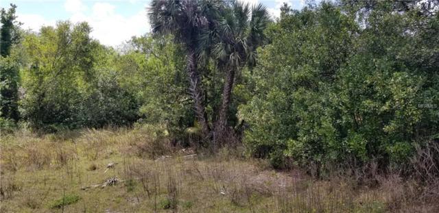 123 E Paulding Street, Seville, FL 32190 (MLS #V4906498) :: Mark and Joni Coulter | Better Homes and Gardens