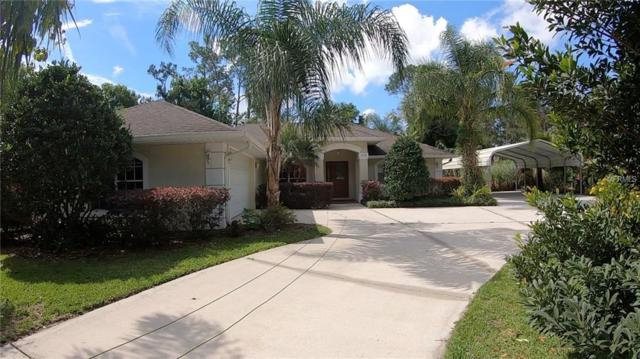 413 W Highbanks Road, Debary, FL 32713 (MLS #V4906744) :: Mark and Joni Coulter | Better Homes and Gardens
