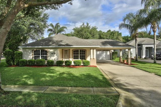 4226 Bristle Cone Way, Port Orange, FL 32129 (MLS #V4906777) :: Team Bohannon Keller Williams, Tampa Properties