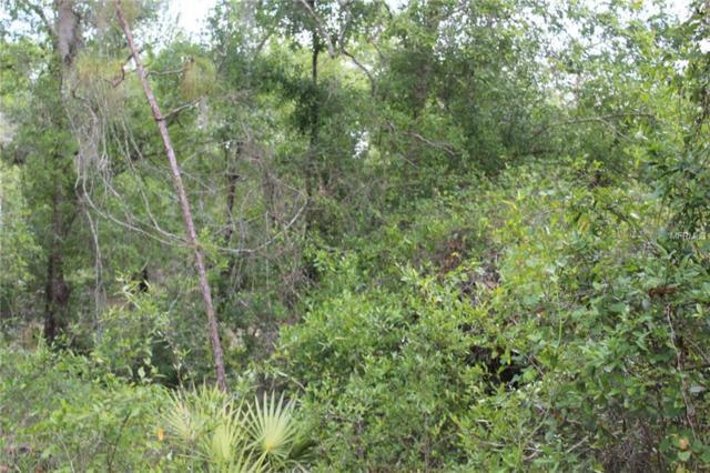 No Street, Deland, FL 32724 (MLS #V4906797) :: Florida Life Real Estate Group
