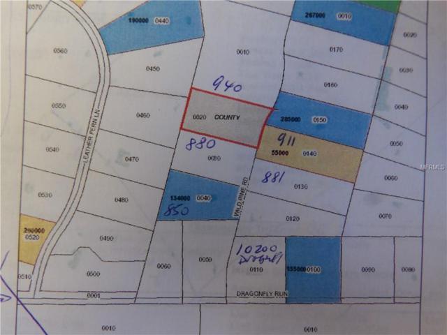 910 Wild Pine Road, Mims, FL 32754 (MLS #V4906885) :: Cartwright Realty