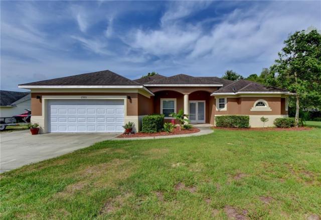 2980 Little Court, Deltona, FL 32738 (MLS #V4906896) :: Cartwright Realty