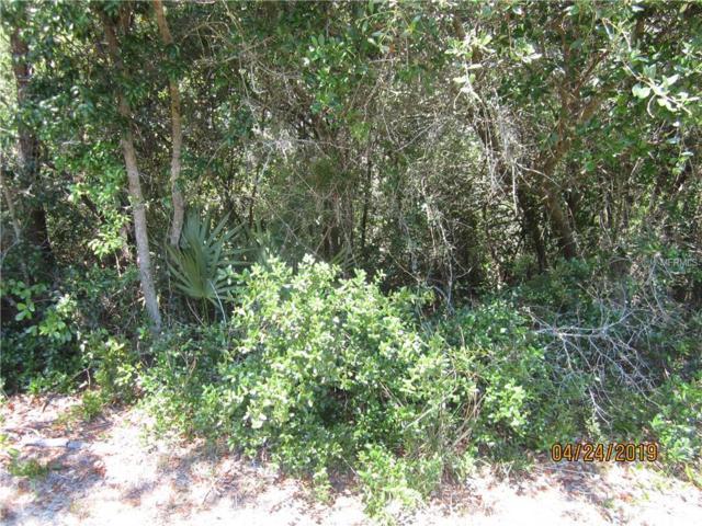 Howland Blvd Howland Blvd, Deltona, FL 32738 (MLS #V4906931) :: Premium Properties Real Estate Services