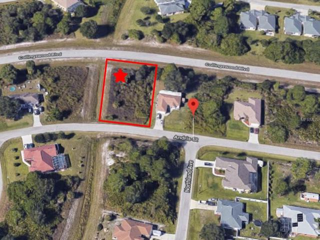Andris Street, North Port, FL 34288 (MLS #V4906990) :: Homepride Realty Services