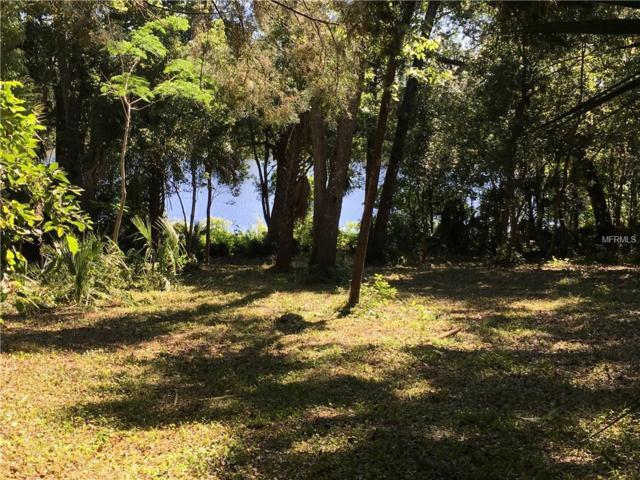 Vista Street, Lake Helen, FL 32744 (MLS #V4907044) :: Premier Home Experts