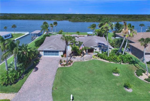 123 Palm Breeze, Edgewater, FL 32141 (MLS #V4907259) :: Premium Properties Real Estate Services
