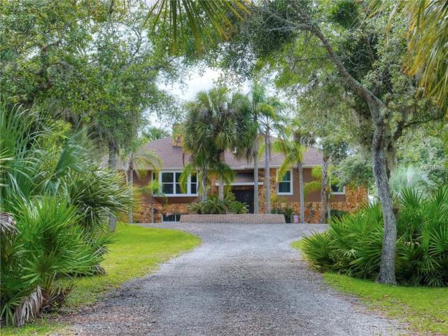 2479 S Glencoe Road, New Smyrna Beach, FL 32168 (MLS #V4907307) :: Team Suzy Kolaz