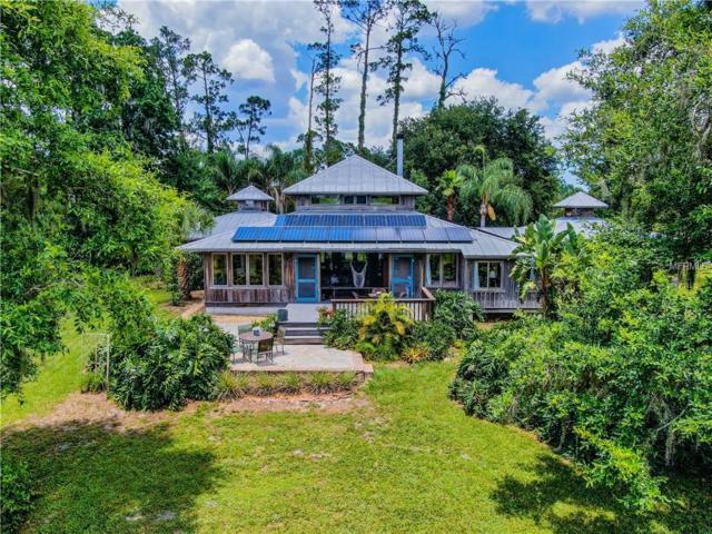 810 Island Grove Drive, Deland, FL 32724 (MLS #V4907359) :: Team Bohannon Keller Williams, Tampa Properties