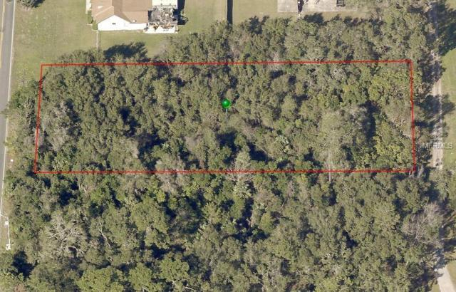 Address Not Published, Deland, FL 32720 (MLS #V4907399) :: Burwell Real Estate