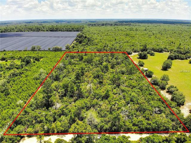 Harmony Woods Trail, De Leon Springs, FL 32130 (MLS #V4907419) :: The Duncan Duo Team