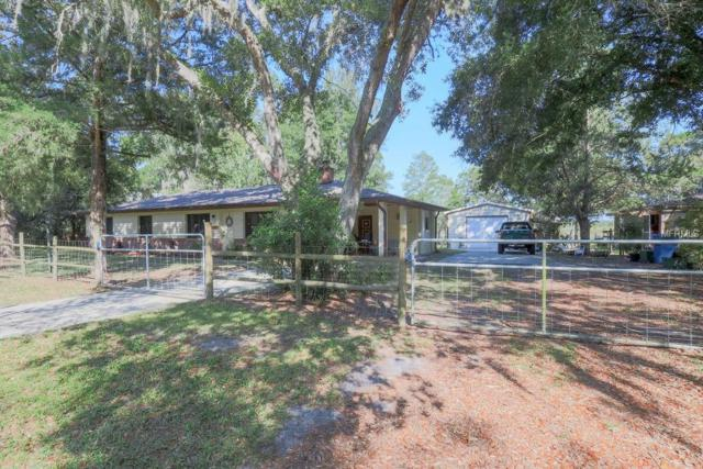 2528 Park Lake Drive, Deland, FL 32724 (MLS #V4907424) :: Lovitch Realty Group, LLC
