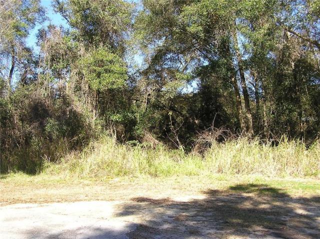 Elsasser Avenue, Deland, FL 32720 (MLS #V4907445) :: The Duncan Duo Team