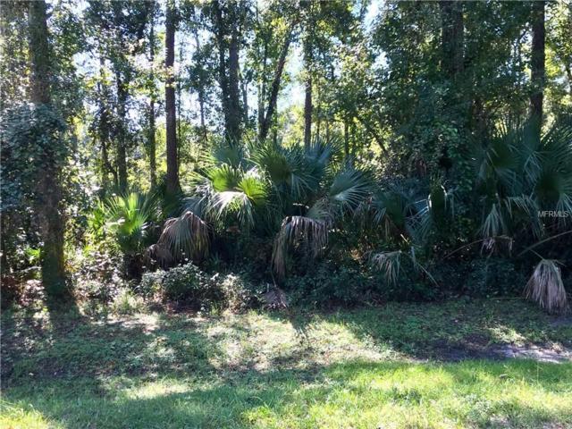 1623 Caroline Drive, Pierson, FL 32180 (MLS #V4907546) :: The Duncan Duo Team
