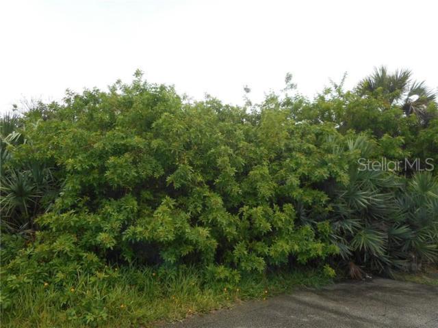 0 Angelfish, New Smyrna Beach, FL 32169 (MLS #V4907752) :: BuySellLiveFlorida.com