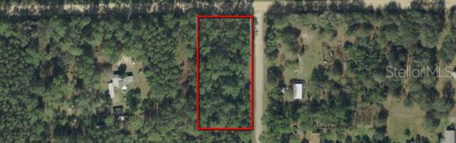 4997 Canal Avenue, Bunnell, FL 32110 (MLS #V4907755) :: The Duncan Duo Team