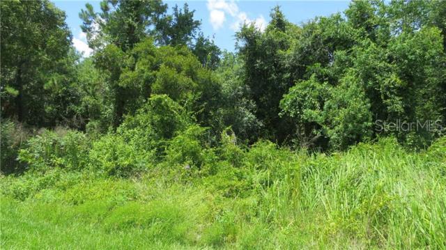 1825 N Kingway Drive, Deltona, FL 32738 (MLS #V4907974) :: The Duncan Duo Team