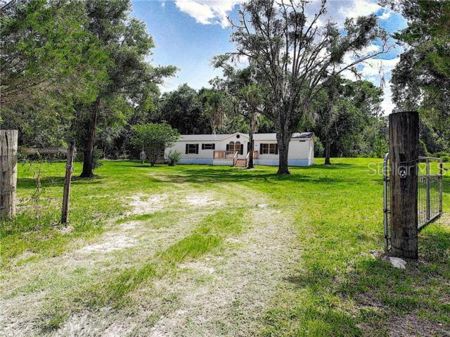 6060 Winning Wood Trail, De Leon Springs, FL 32130 (MLS #V4908110) :: Lock & Key Realty