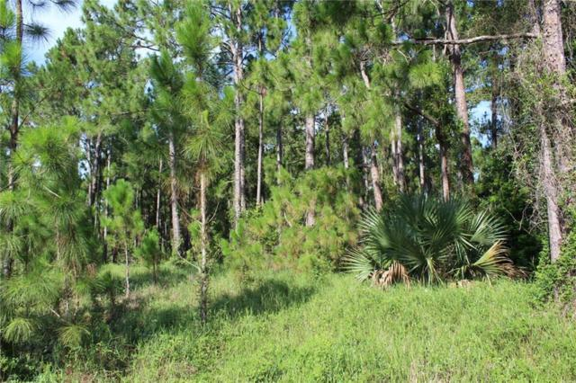 Mccracken Road, Lake Helen, FL 32744 (MLS #V4908207) :: The Duncan Duo Team