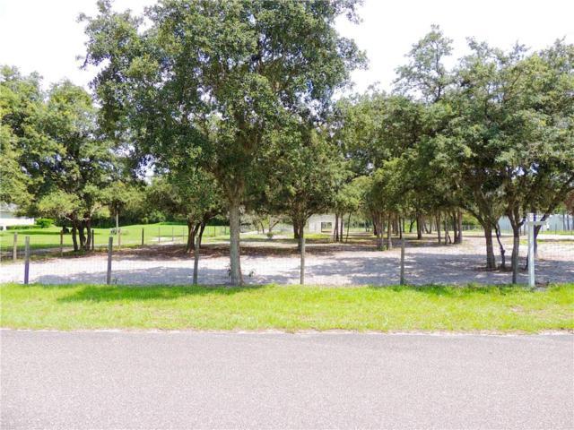Shaw Lake Road, Pierson, FL 32180 (MLS #V4908312) :: GO Realty