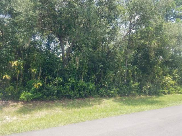 1420 Waterview Drive, Deltona, FL 32738 (MLS #V4908534) :: Cartwright Realty
