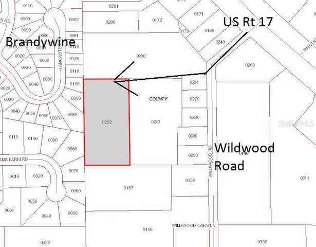 127 Wildwood Road, Deland, FL 32720 (MLS #V4908616) :: Griffin Group