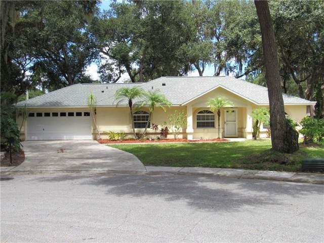 6109 Zion Circle, Port Orange, FL 32127 (MLS #V4908745) :: Bustamante Real Estate