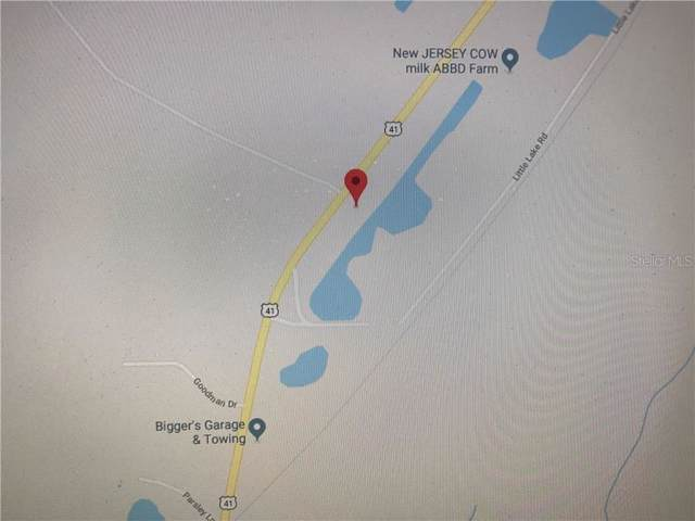 Highway 41, Brooksville, FL 34610 (MLS #V4908937) :: Cartwright Realty