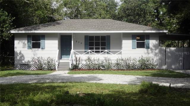 230 Buford Avenue, Orange City, FL 32763 (MLS #V4909084) :: Team Bohannon Keller Williams, Tampa Properties