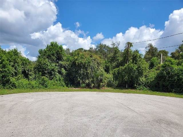 1315 Restmere Court, Deltona, FL 32725 (MLS #V4909424) :: Cartwright Realty