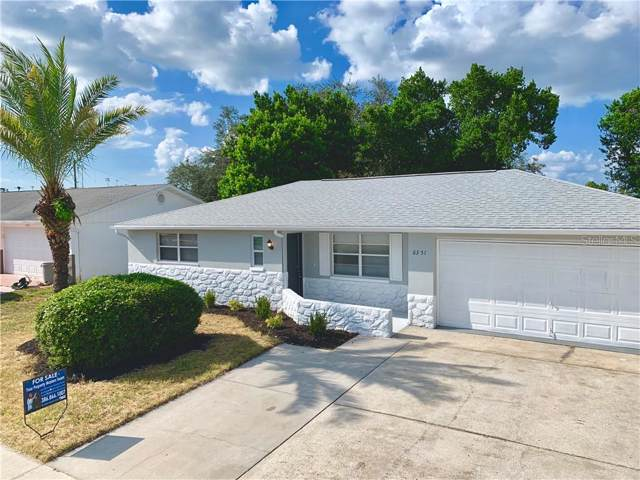 6351 Langston Avenue, New Port Richey, FL 34653 (MLS #V4909516) :: Zarghami Group