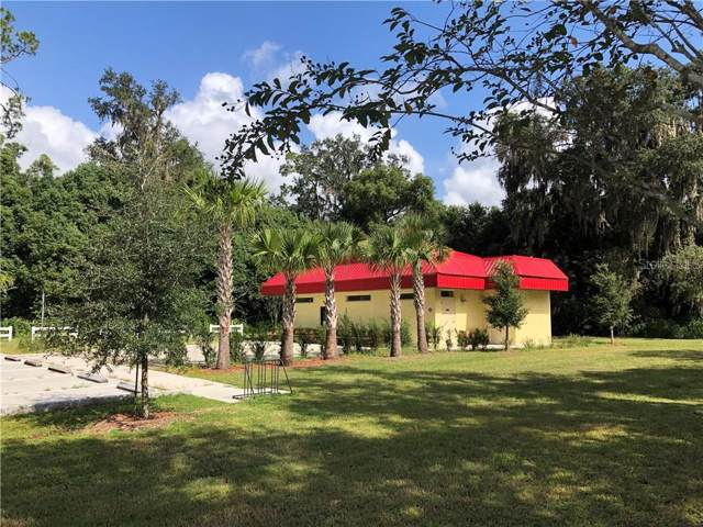 138 E State Rd 40, Pierson, FL 32180 (MLS #V4909530) :: The Duncan Duo Team