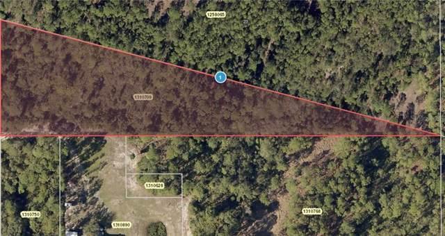 Polar Bear Road, Paisley, FL 32767 (MLS #V4909546) :: Rabell Realty Group