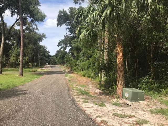 1665 Ridgewood Hammock, Deland, FL 32720 (MLS #V4909665) :: Premium Properties Real Estate Services