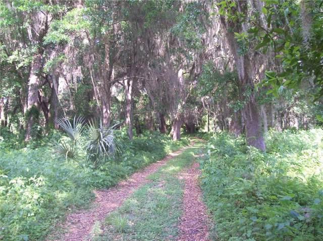 Cade Fernery Road, Seville, FL 32190 (MLS #V4909855) :: CENTURY 21 OneBlue