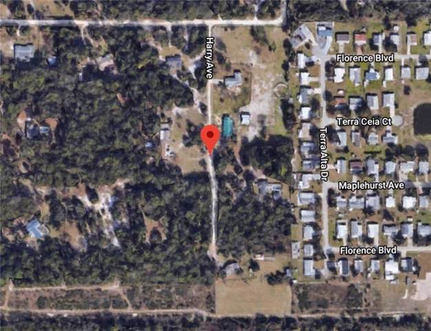 Harry Avenue, Orange City, FL 32763 (MLS #V4910008) :: Griffin Group