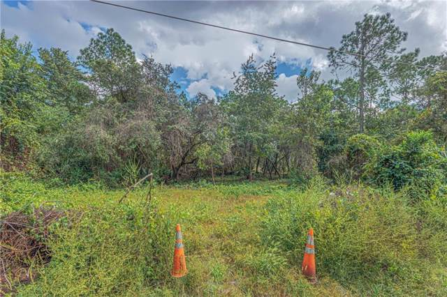 Holly Way, Deland, FL 32720 (MLS #V4910103) :: Alpha Equity Team