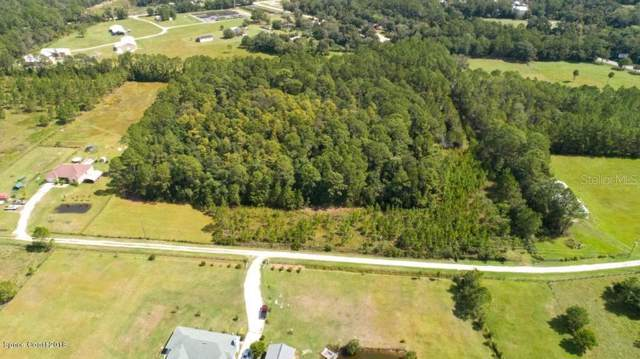 Meadowville Road, Pierson, FL 32180 (MLS #V4910119) :: 54 Realty