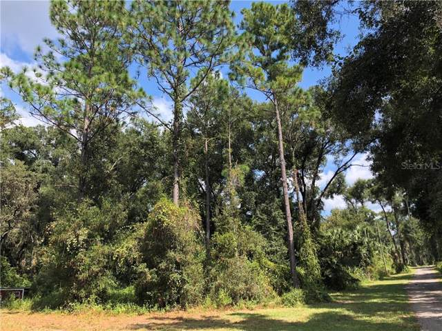 2185 Sage Willow Lane, De Leon Springs, FL 32130 (MLS #V4910131) :: 54 Realty