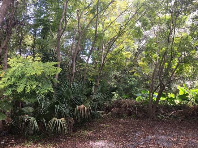 W Graig Avenue, Lake Helen, FL 32744 (MLS #V4910135) :: 54 Realty