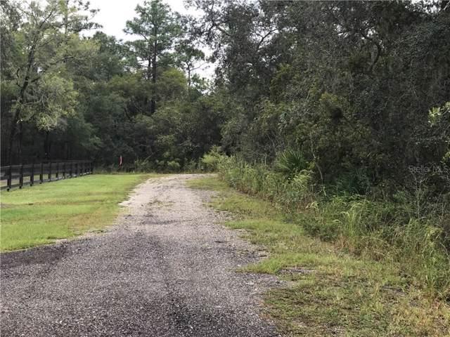 Winchester Lake Drive, De Leon Springs, FL 32130 (MLS #V4910191) :: Keller Williams Realty Peace River Partners